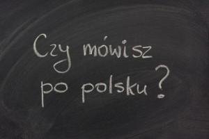 Polish School Registration